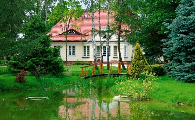 Ogród przydomowy z oczkiem wodnym